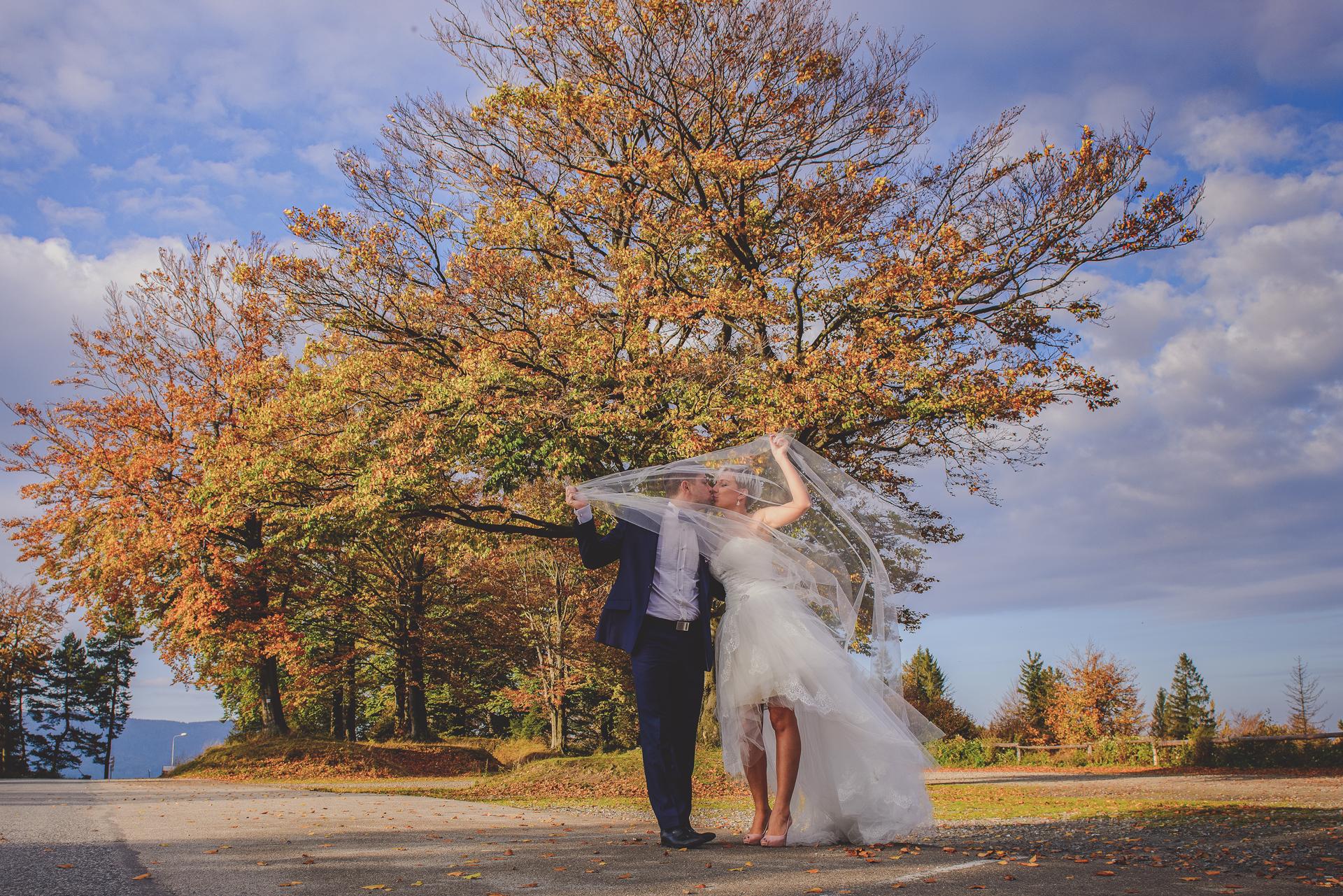 Złota jesień kreatywny kadr Kęty Bielsko-Biała Para Młoda welon niebo niebieskie
